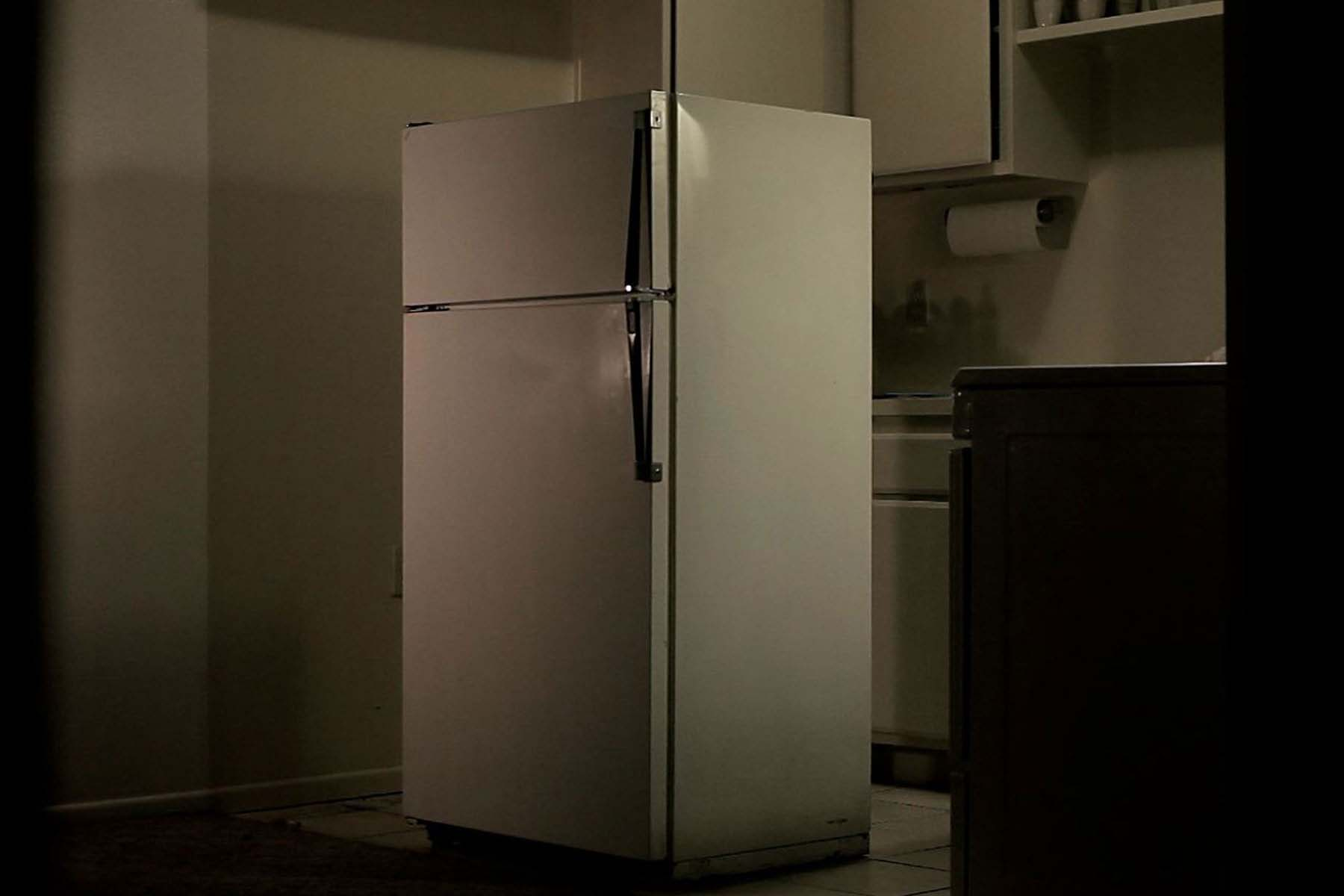 FRANCISCO JANES - Untitled (Fridge)