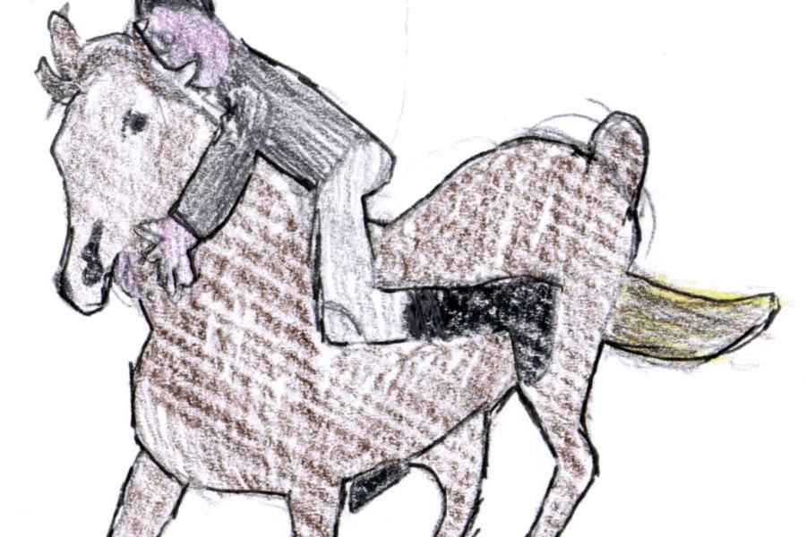 SÉRGIO PELÁGIO - Magnetic Stories / My first Dom Quixote